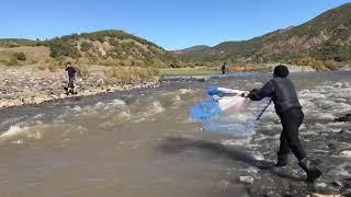 Serpme ile balık avı