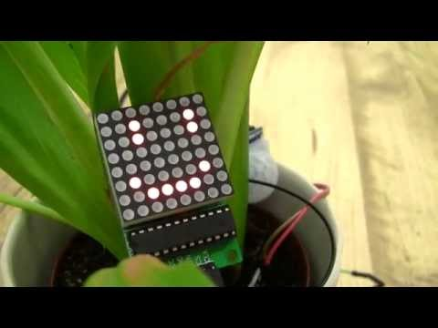 The Arduino Plant With JavaScript Voice Recognition