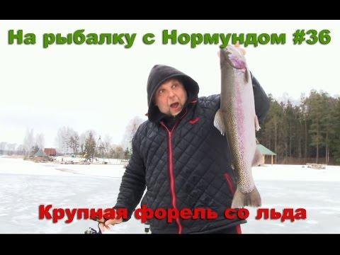 Рыбалка в Подмосковье по Ленинградскому шоссе