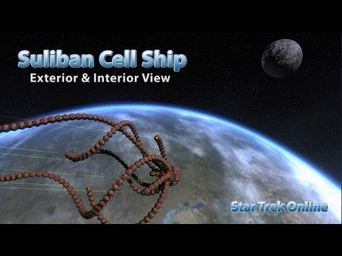 STO -Suliban Cell Ship - Exterior and Interior View
