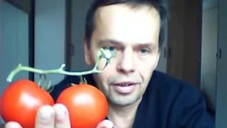Запредельно простой способ выбора овощей и фруктов на рынке