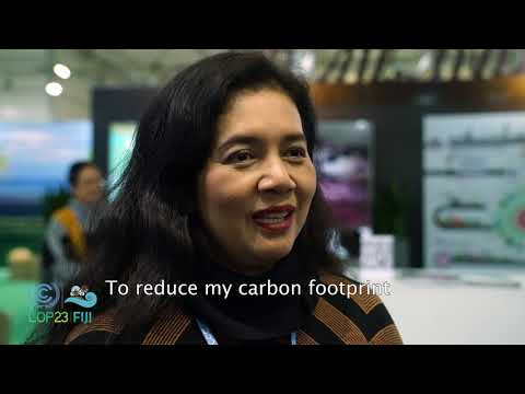 What do you do to reduce your carbon footprint?