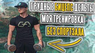 постер к видео Моя Реальная Тренировка Без Спортзала(Грудные, Бицепс, Дельты)
