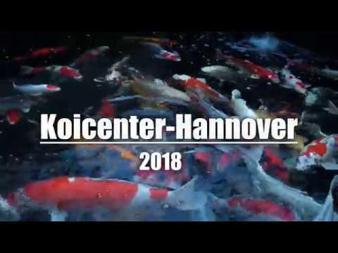 Koicenter Hannover 2018