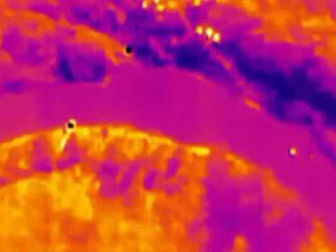 Stabilized video captured in thermal band using FLIR Ocean Scout TK