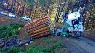 Extremely Dangerous Tree Felling Fails & Overloaded Logging Trucks Climbing Mountain Go Wrong