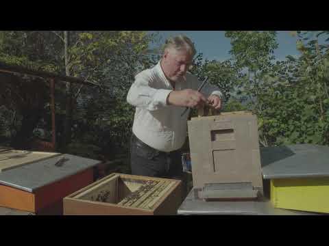 Nassenheider Professional Verdunster,Imker,Imkerei,Varroa,Bienen,bee,f.2 Völker