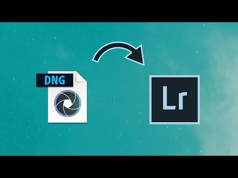 Convert Mobile DNG to lrtemplate or XMP