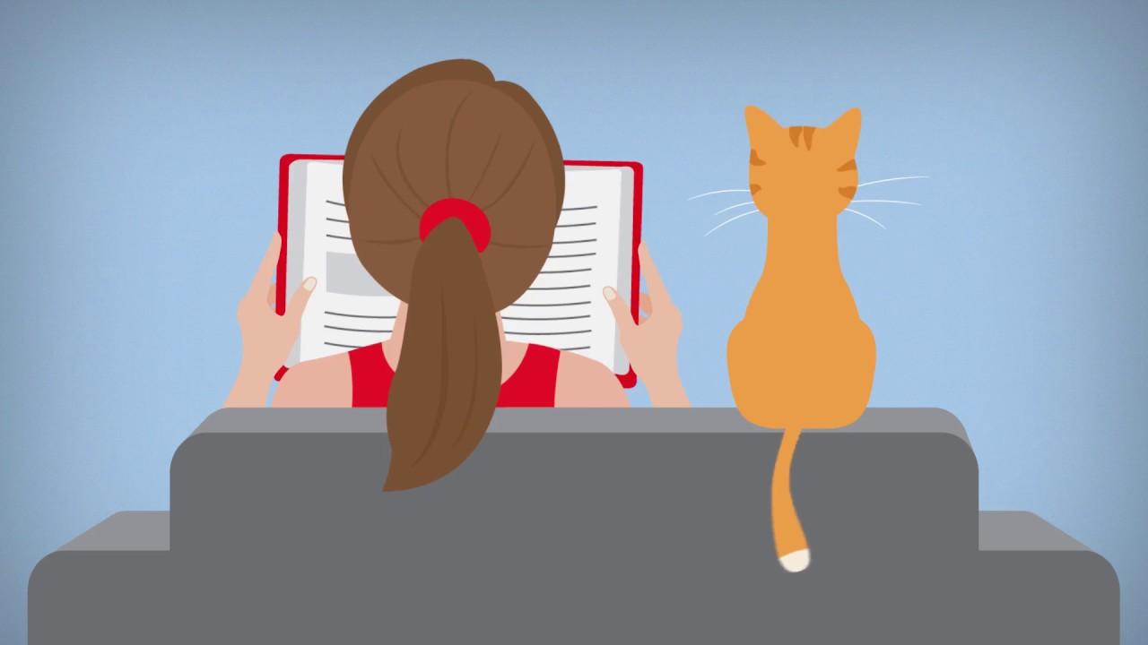 Mitos y realidades de los gatos - Hill´s