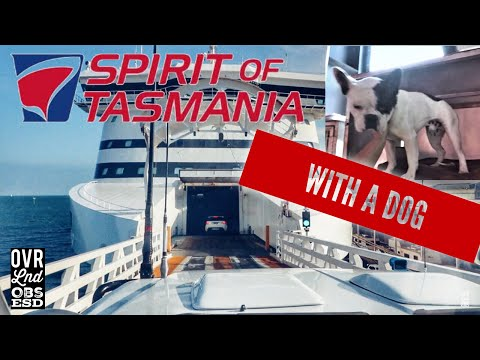 Our trip on The Spirit Of Tasmania WITH our Dog