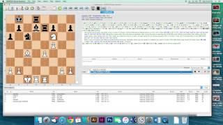 How to use a chess engine to improve your game.