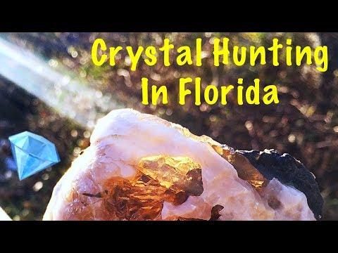 Treasure Hunting Digging Calcite Crystals & Fossil Shells in Florida