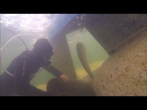 "Amateur built Submarine ""Euronaut"" - Cleaning the propeller shaft"