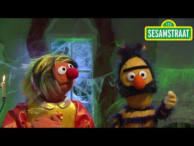 Het mooie meisje en het beest - Bert & Ernie - Sesamstraat