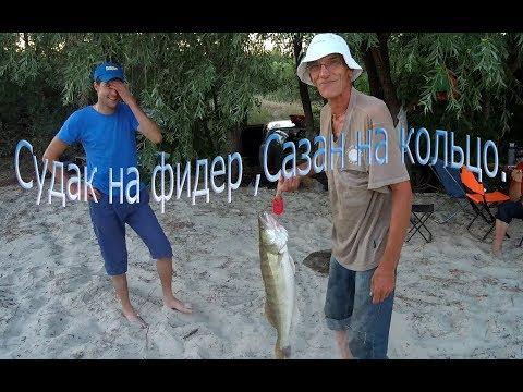 Первая летняя рыбалка на реке Дон 11 июня 2019 (  вечер )