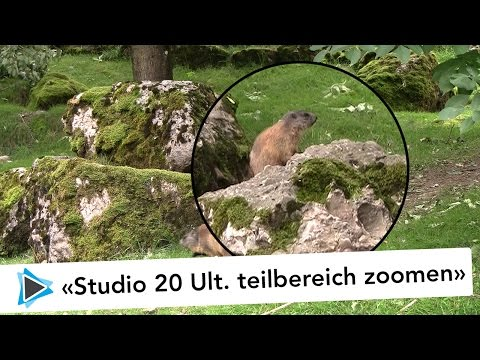 NewBlue Video Essential 6 Wegschneiden cut away Teilbereich zoomen Pinnacle Studio 20 Ultimate Video