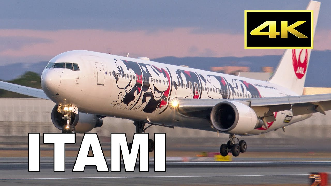 [4K] Sunset Plane Spotting at Osaka Itami Airport in Japan / 伊丹空港 JAL ANA