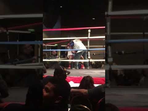 Charlie Mr.Hollywood Natal vs Chukka LionKing Willis
