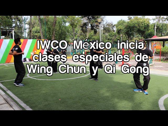 IWCO México reinició actividades de Wing Chun y Qi Gong