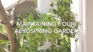 Maintaining your Aerospring Garden