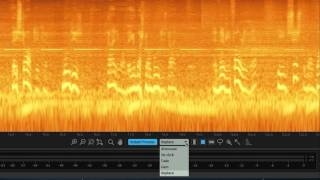 Instant Process in iZotope RX 5 Audio Editor | Before and After Audio Example