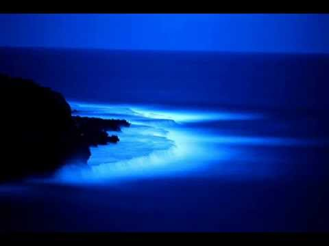 Theta ~ Play & Pause: Ultrasound (Ambient Music)