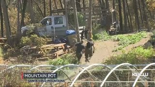 Loma Fire Exposes Pot Farms In Santa Cruz Mountains.