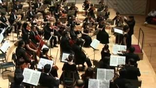 Wagner:Der Ring des Nibelungen(selection)