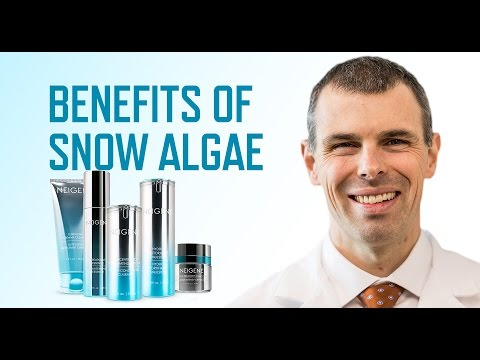 What are the benefits of Snow Algae?