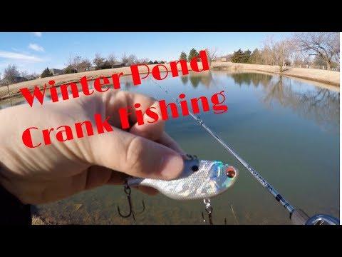 OKC Pond Fishing!!