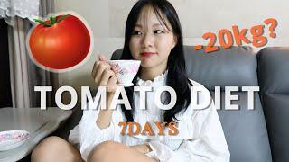 [알로하홈카페]토마토 다이어트 일주일 다이어트썰 | 일…