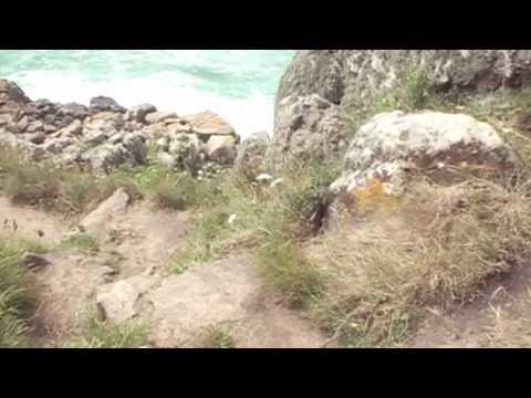 footpath to pednvounder