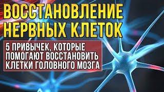 5 привычек восстанавливающих нервные клетки