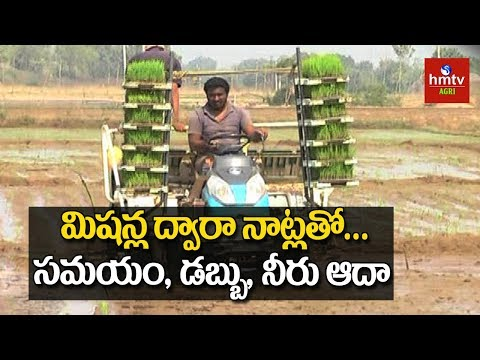 Modern Paddy Cultivation | Agriculture...
