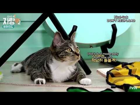 [ENG] Kim Yongguk - Cat Butler's Brag S2 BEHIND EP. 6