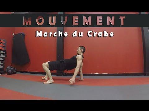 Mouvement - La Marche du Crabe