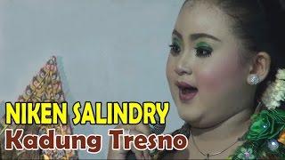 Download KADUNG TRESNO & BAJING LONCAT | NIKEN SALINDRI