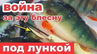 ВОЙНА под ЛУНКОЙ ЗА БЛЕСНУ Зимняя рыбалка в Феврале Ловля окуня на блесну