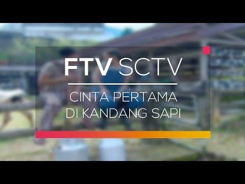 FTV SCTV - Cinta Pertama di Kandang Sapi