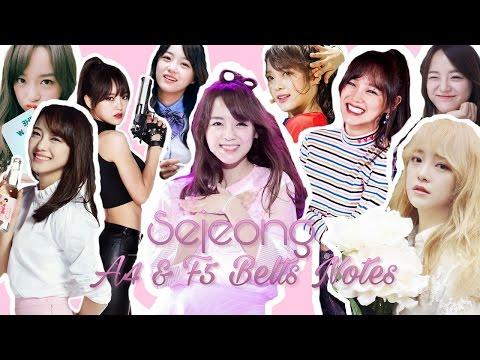 Sejeong Vocal Range Belts (A4 & F5)
