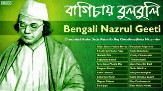 rim jhim rim jhim best nazrul geeti collection nazrul geeti bengali songs of nazrul