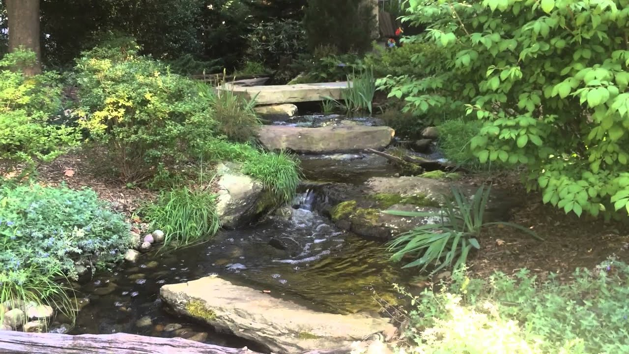 how to design backyard waterfall stream baltimore maryland