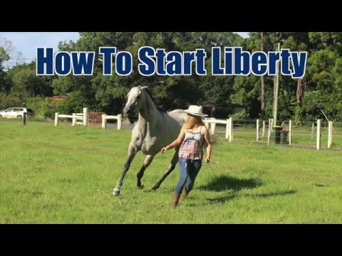 how-to-start-liberty-training-(the-basics)