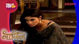 Ritik Slaps Shivanya In Naagin | Telly Top Up