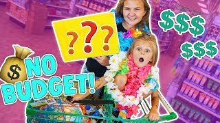 no budget at the dollar store challenge slyfox family