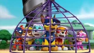 Video Paw Patrol Mission Paw - Mighty Pups Rescue Team Rubble, Skye Training Day - Nickelodeon Kids Games download MP3, 3GP, MP4, WEBM, AVI, FLV Agustus 2019