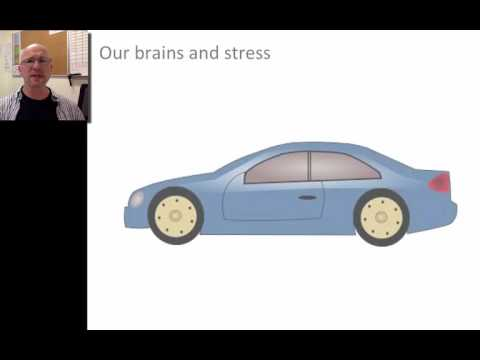 Critical Incident Stress for Paramedics: Part 1 of 3