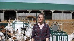 Lakeland Farm And Ranch Direct Youtube