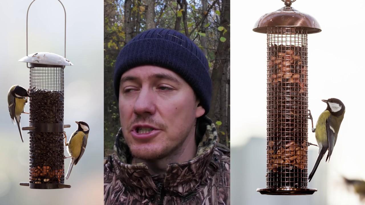 Птицы. Парк птиц предлагает птенцов и молодняк. Принимаем предварительные заказы. По вопросам. Цена в зависимости от возраста. Черная.