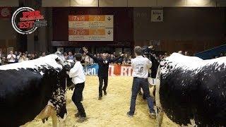 Concours de la race Vosgienne au SIA 2014